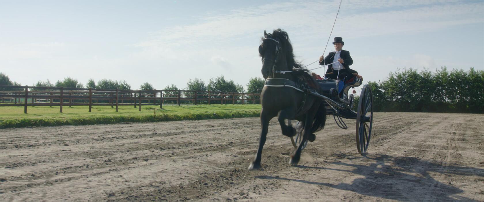 film_still_horses14_1680x700