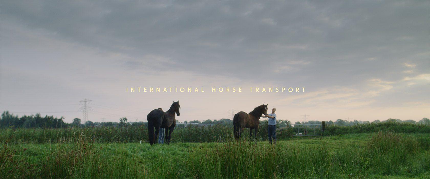 film_still_horses8_1680x700