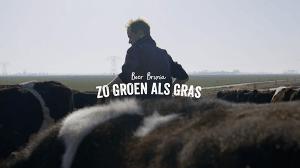 Zo Groen als Gras